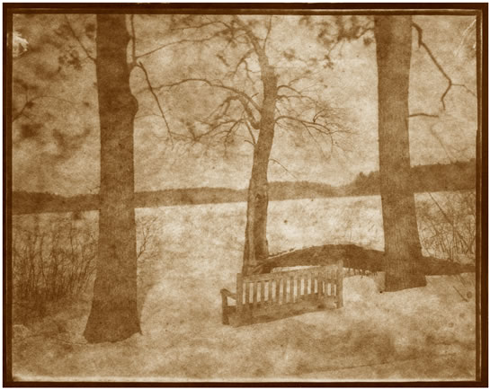 Koichiro Kurita -  'Beyond Sight H', Great Meadows, Concord, MA, 2014, Albumen print from Talbotype paper, negative image size 8 x 10 inches, Edition 8