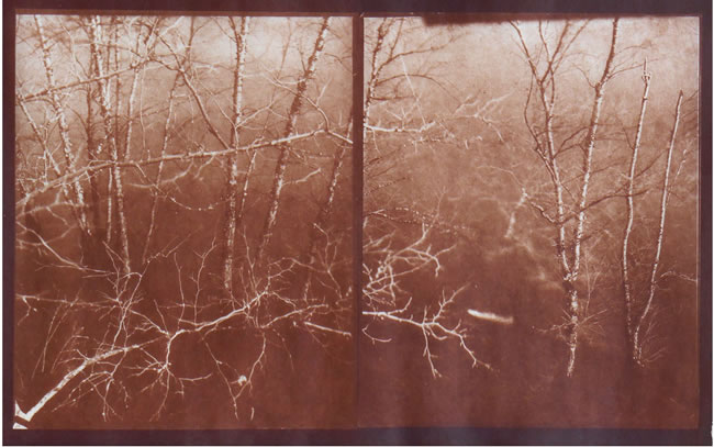 Koichiro Kurita -  'Spring Thaw in Merrimack', Lowell, MA, 2015, Albumen print  from Talbotype paper negatives,  10 x 16 inches,  Edition 5, AP 2