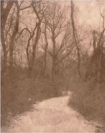 Koichiro Kurita -  'Winter Path', Great Meadows, Concord, MA, 2014, Albumen print on Japanese gampi paper from Talbotype paper negative paper,  8 x 10 inches, Edition 8, AP 2