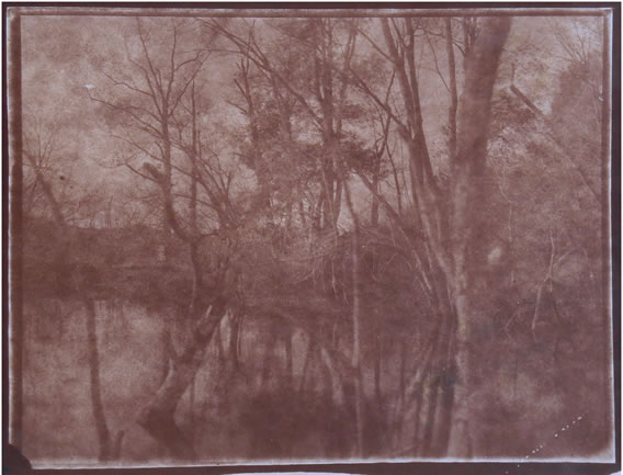 Koichiro Kurita -  'Twilight', Ipswich River, MA, 2015, Albumen print  from Talbotype paper negative,  8 x 10 inches,  Edition 8, AP 2
